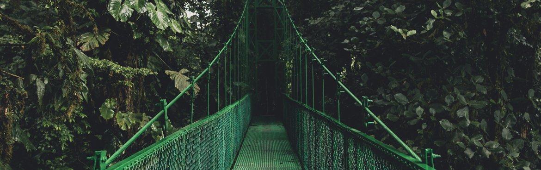 ponti-costa-rica