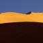 namibia e wildlife