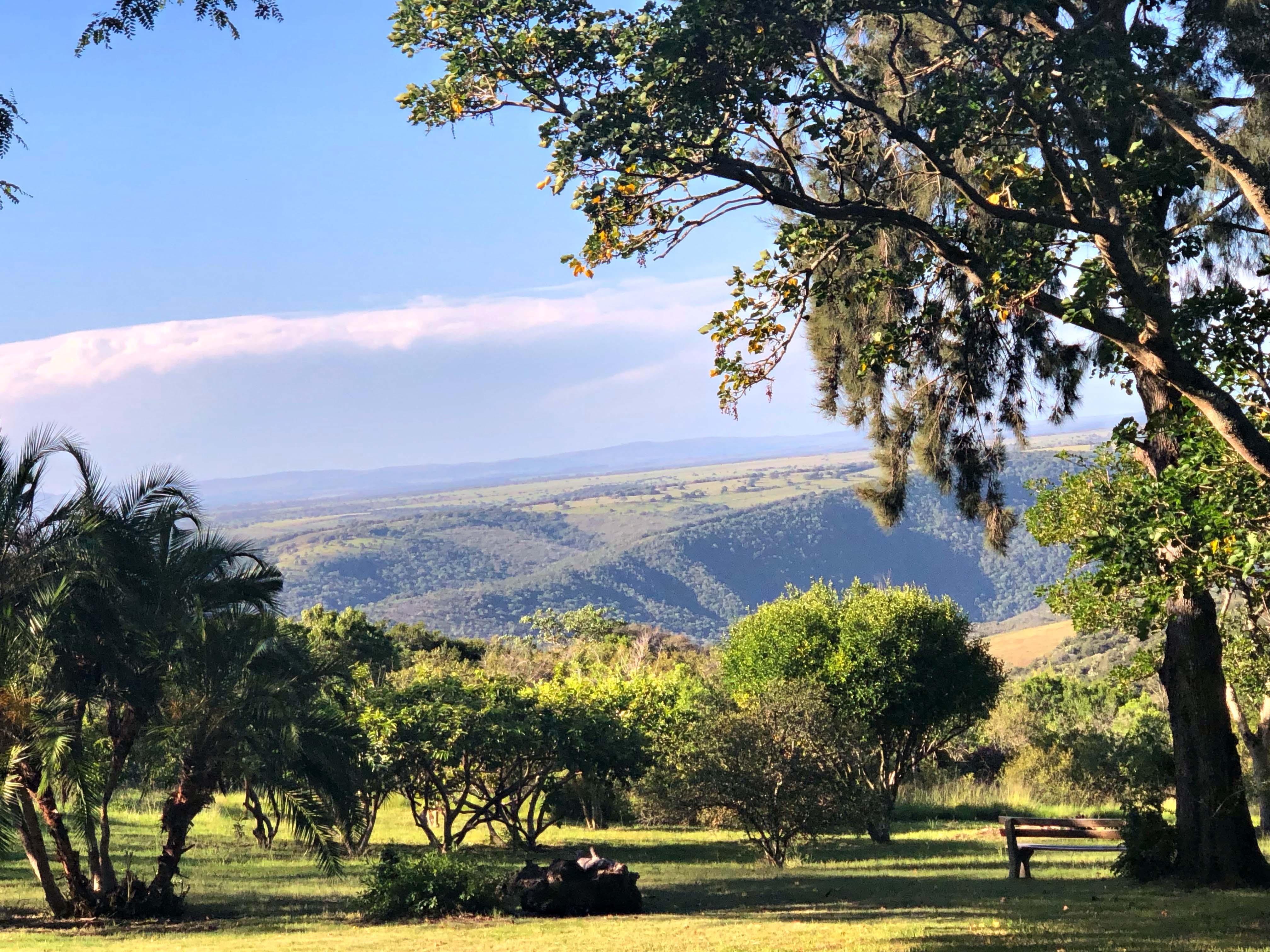 SWE Intaka Garden View