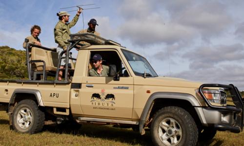 volontariato naturalistico sudafrica 1